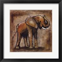 Framed Safari Elephant