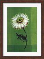 Framed Flower on Green