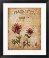 Framed Parcnaturel I