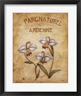 Framed Parcnaturel II