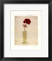 Framed Red Anemones I