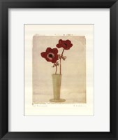 Framed Red Anemones II