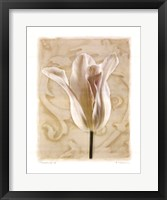 Chiaroscuro II Framed Print
