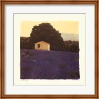 Framed Lavender Country