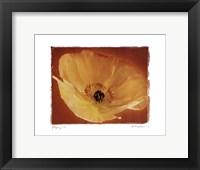 Poppy I Framed Print