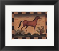 Farm Horse Framed Print