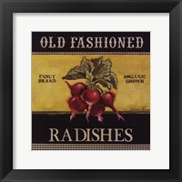 Old Fashioned Radishes Framed Print