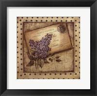 Framed Paris Lilac