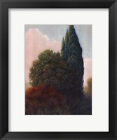 Framed Tuscan Trees II