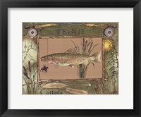 Framed Trout