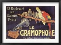Framed Gramophone