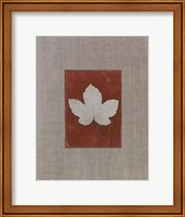 Framed Silver Leaf III
