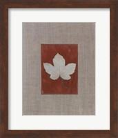 Framed Silver Leaf III