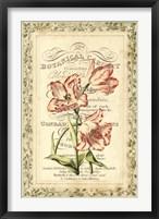 Framed Botanic Cabinet