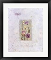 Framed Lisianthus