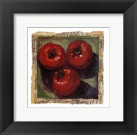 Three Tomatoes Framed Print