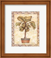 Framed Palm Tree I