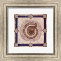 Framed Solarium Shell