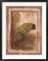 Palm Leaf Impression I Framed Print