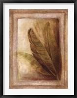 Palm Leaf Impression II Framed Print