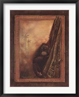 Framed Orangutan II