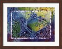 Framed Twin Triggerfish
