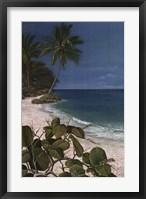 Framed Carribean Escape I