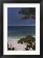 Framed Carribean Escape II
