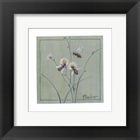 Framed Honey Bees