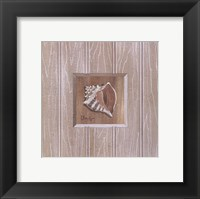 Framed Beadboard Conch