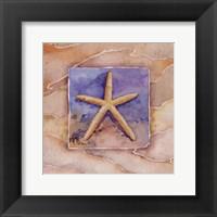 Framed Summer Starfish
