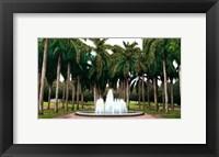 Framed University of Central Florida