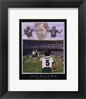 Framed Little Eagle Eye - Donovan McNabb