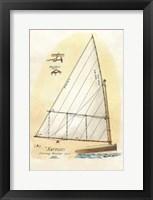 Framed Nautilus III