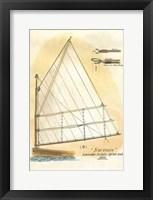 Framed Nautilus IV