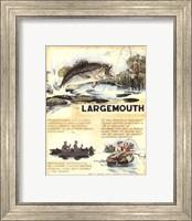 Framed Large Mouth