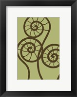Framed Dichromatic Fiddleheads II