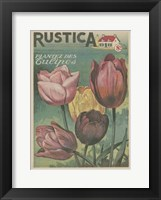 Framed Plantez Des Tulips