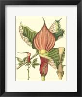 Framed Botanical Fantasy I