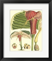 Framed Botanical Fantasy II