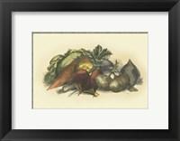 Framed Vegetables from the Earth