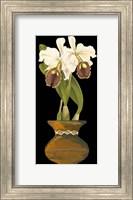 Framed Orchids in Pot II