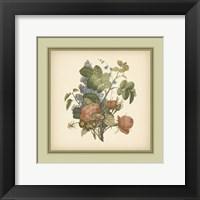 Framed Tuscany Bouquet (P) III