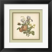 Framed Tuscany Bouquet (P) IV
