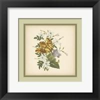 Framed Tuscany Bouquet (P) IX