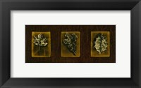 Framed Block Leaf Panel II
