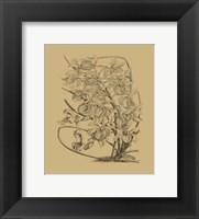 Framed Orchid on Khaki(WG) VI