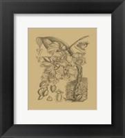 Framed Orchid on Khaki(WG) VIII