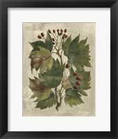 Framed Printed Deshayes Trees I