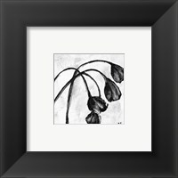 Framed Mini Swooning Tulips I (NA)
